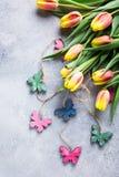 Mooie geeloranje tulpen Stock Fotografie