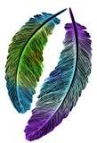 Mooie gekleurde veren voor de vanger van dromen Stock Foto