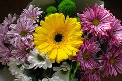 Mooie gele gerberaclose-up met chrysanten Boeket van bloemen stock afbeeldingen