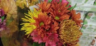 Mooie gele rozen rode en roze bloemen royalty-vrije stock afbeelding
