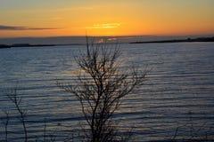 Mooie gele zonsondergang Stock Foto's