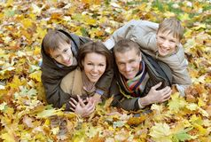 Mooie gelukkige familie Royalty-vrije Stock Foto's