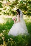 Mooie gelukkige jonge donkerbruine bruid in openlucht in huwelijkskleding, kapsel, samenstelling, huwelijk, levensstijl royalty-vrije stock afbeelding