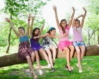 Mooie gelukkige meisjes die op een boomboomstam zitten Stock Foto's