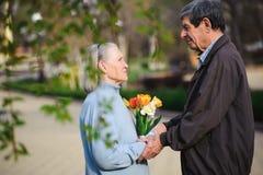 Mooie gelukkige oude mensen die in het de herfstpark zitten stock afbeelding