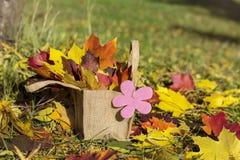 Mooie gevallen de herfstbladeren in een mand Stock Afbeelding