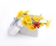 Mooie giftdoos Stock Foto's