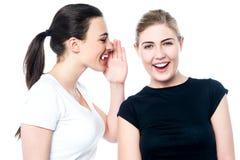 Mooie glimlachende meisjes die een geheim delen stock fotografie