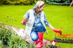 Mooie glimlachende vrouw die in hoofddoek bloemen op bloembed planten Scène in de tuin stock foto
