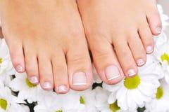 Mooie goed-verzorgde vrouwelijke voeten Stock Fotografie