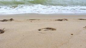 Mooie golf op strand stock videobeelden