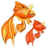 Mooie goudvis twee met magische kronen vector illustratie