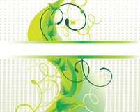 Mooie groene achtergrond Stock Afbeelding