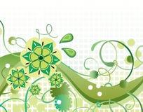 Mooie groene bloemenachtergrond Stock Foto