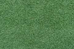 Mooie groene grasachtergrond, textuur, patroon royalty-vrije stock foto's