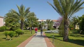 Mooie groene steeg met langs palmen bij de lente, tweepersoonspas stock videobeelden