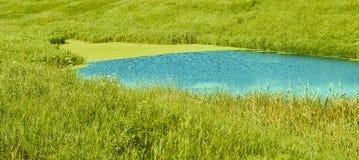 Mooie groene vijver Gefotografeerd in de dag stock afbeelding
