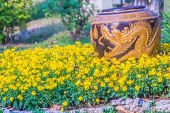 Mooie grote aarden kruik met gele die draak in de gele bloemtuin wordt gevormd royalty-vrije stock fotografie