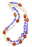 Mooie halsband stock afbeelding