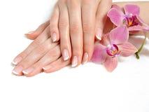 Mooie hand met perfecte spijker Franse manicure royalty-vrije stock afbeelding