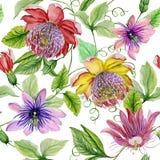 Mooie hartstochtsbloemen stock illustratie