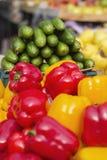 mooie heldere en verse groenten voor het dieet en gewichtsverlies, selectie van groenten voor elke maaltijd aan uw lijst, vegetab stock afbeeldingen