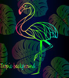 Mooie heldere gradiënt van flamingo's en tropische bladeren Royalty-vrije Stock Afbeelding