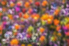 Mooie heldere kleurrijke achtergrond met onduidelijk beeld Stock Foto