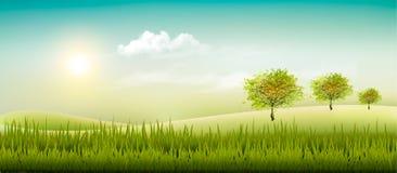 Mooie het landschapsachtergrond van het de zomerplatteland stock illustratie
