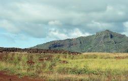 Mooie Heuvels en Valleien van het Eiland Kauai, Hawaï stock foto's