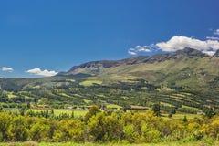 Mooie heuvels van Zuid-Afrika Stock Afbeelding