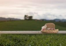 Mooie hoed met bloem en natuurlijke achtergrond Stock Foto