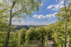 Mooie hoogste mening van de bossen van Luxemburg stock afbeeldingen