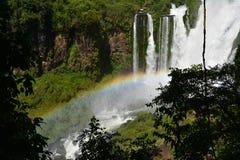 Mooie Iguazu-Dalingen van Argentinië Zuid-Amerika royalty-vrije stock fotografie