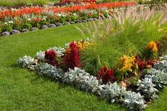 Mooie Installaties en Bloemen bij Experimenteel Landbouwbedrijf in Ottawa Canada royalty-vrije stock afbeelding