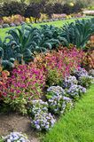 Mooie Installaties en Bloemen bij Experimenteel Landbouwbedrijf in Ottawa Canada stock fotografie