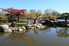 Mooie Japanse Tuin Royalty-vrije Stock Afbeeldingen
