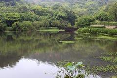Mooie jinghu (stil meer) royalty-vrije stock afbeeldingen