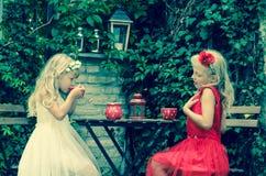 Mooie jong geitje het drinken thee Royalty-vrije Stock Afbeelding
