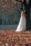 Mooie jonge bruid royalty-vrije stock foto's
