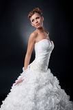 Mooie jonge bruid in het bruids kleding stellen   Stock Afbeelding
