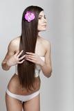 Mooie jonge donkerbruine vrouw met lang haar Stock Fotografie