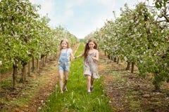 Mooie jonge meisjes in de lentetuin Stock Foto's