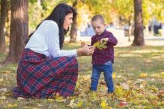 Mooie jonge moederspelen met haar zoon in het park in de herfst royalty-vrije stock afbeelding