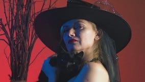 Mooie jonge sexy vrouw in een zwarte heksenkostuum en een hoed, met een bezem en een zwarte kat in haar handen onderzoeken stock videobeelden