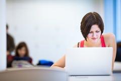 Mooie, jonge student die in de bibliotheek bestuderen Stock Foto's
