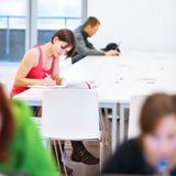 Mooie, jonge student die in de bibliotheek bestuderen Stock Foto