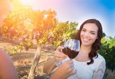 Mooie Jonge Volwassen Vrouw die van Glas Wijn Proevende Toost genieten in de Wijngaard met Vrienden royalty-vrije stock afbeelding
