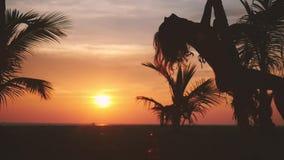Mooie jonge vrouw die op een schommeling bij verbazende zonsondergang door de zon op tropisch strand slingeren Langzame Motie 192 stock videobeelden