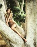 Mooie jonge vrouw in een boom Royalty-vrije Stock Afbeelding